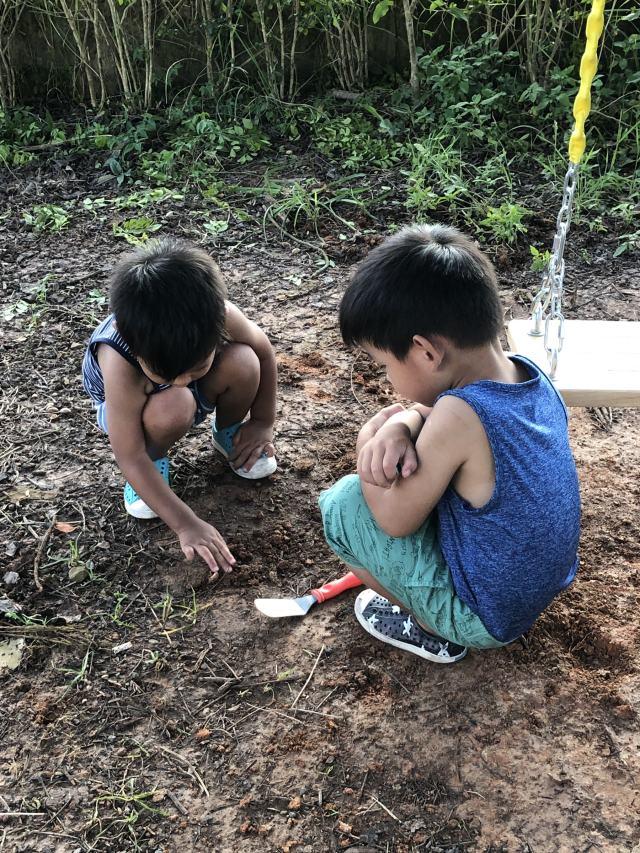 山上用鏟子挖土